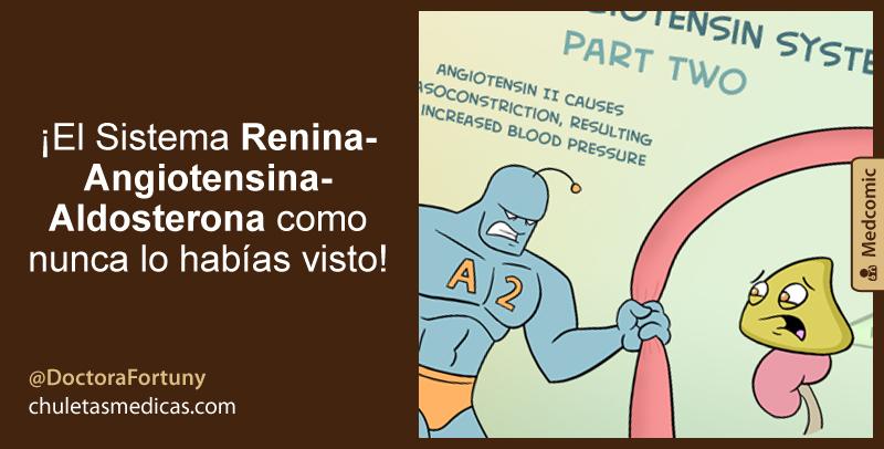 ¡El Sistema Renina-Angiotensina-Aldosterona como nunca lo habías visto!