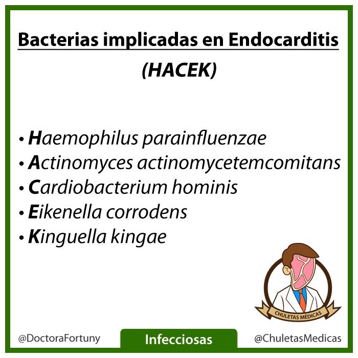Principales bacterias causantes de la Endocarditis Infecciosa Chuleta