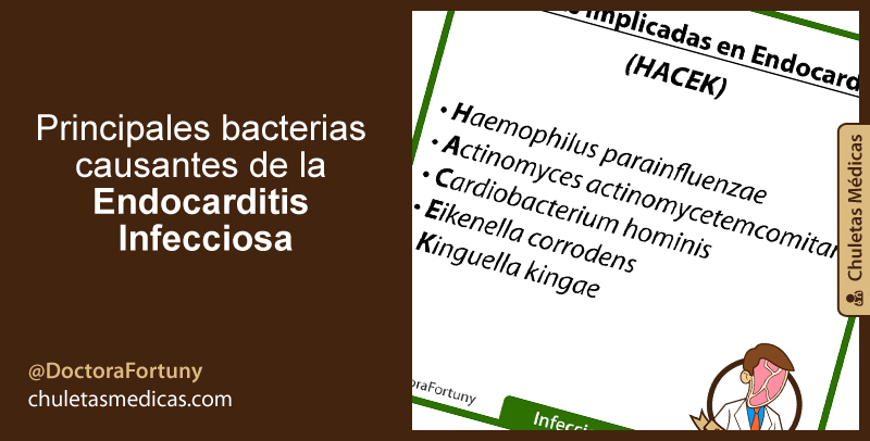 Principales bacterias causantes de la Endocarditis Infecciosa