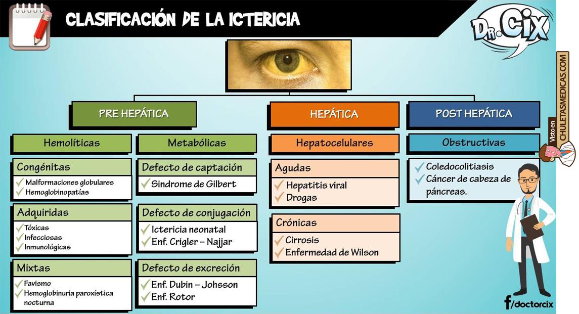Ictericia: Diagnóstico diferencial chuleta