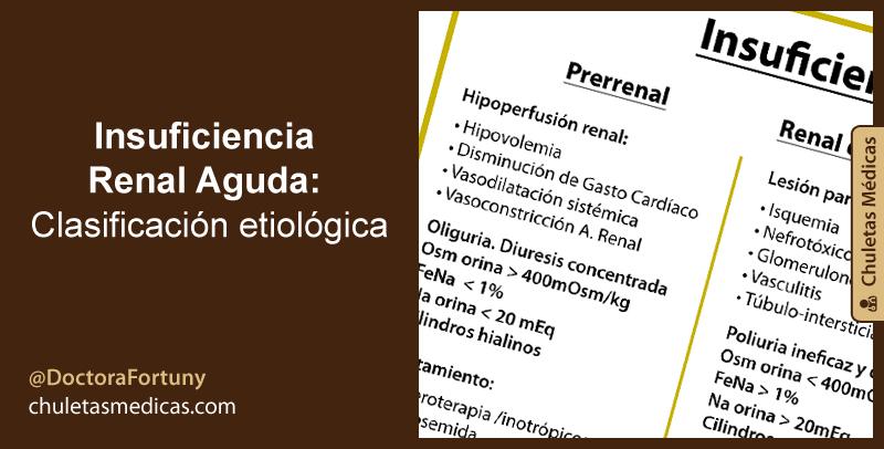 Insuficiencia Renal Aguda: Clasificación etiológica