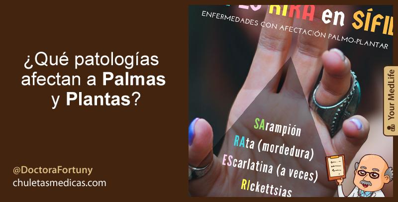 ¿Qué patologías afectan a Palmas y Plantas?